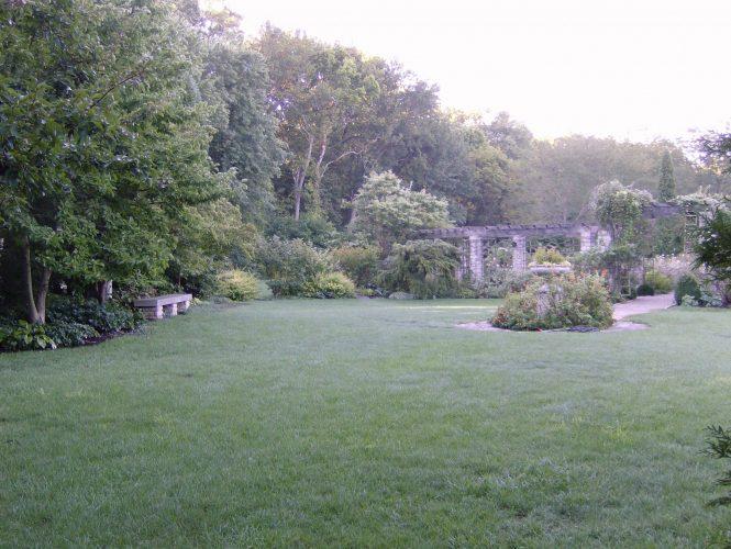 Arbor-Lawn