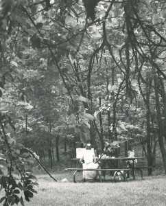 Picnic in the park, 1965