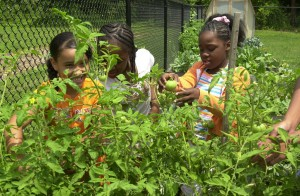 Children gardening at Wesleyan